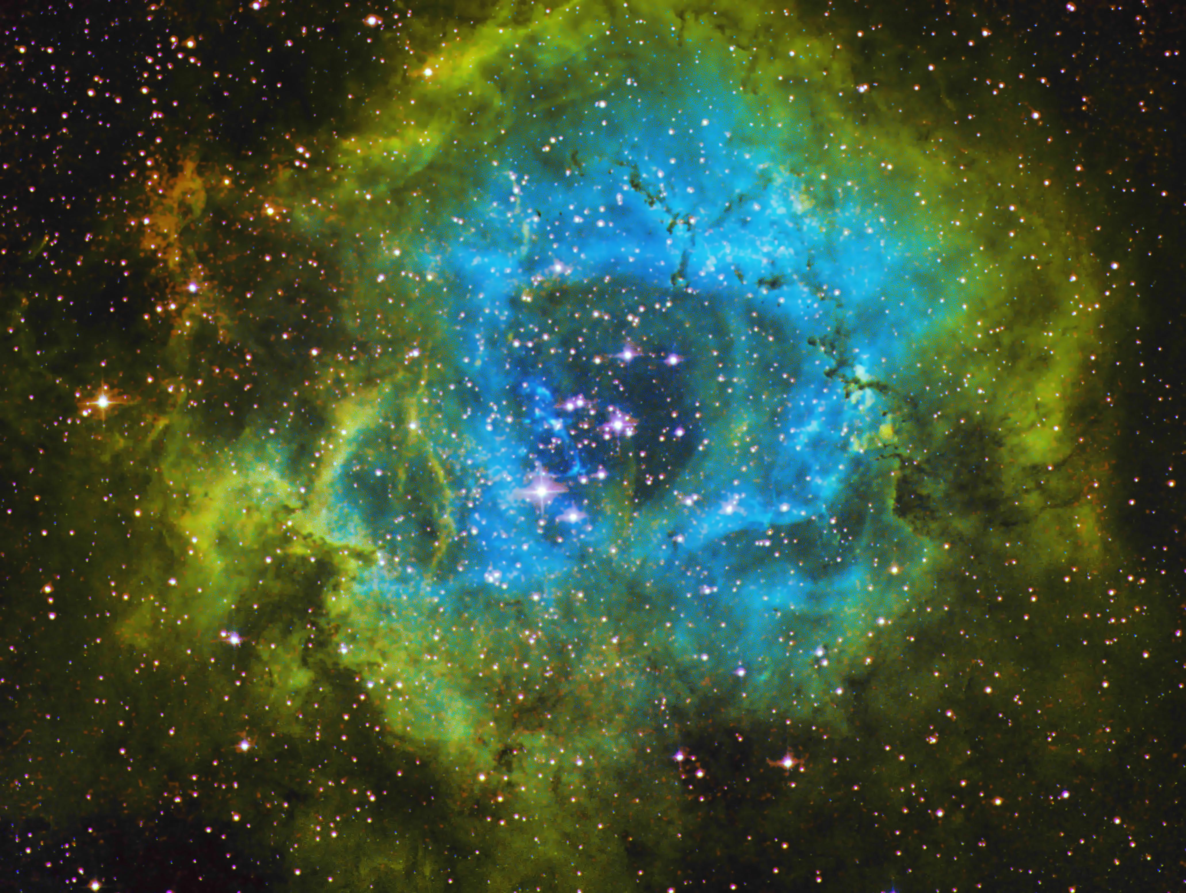 Rosette Nebula in the Hubble Palette